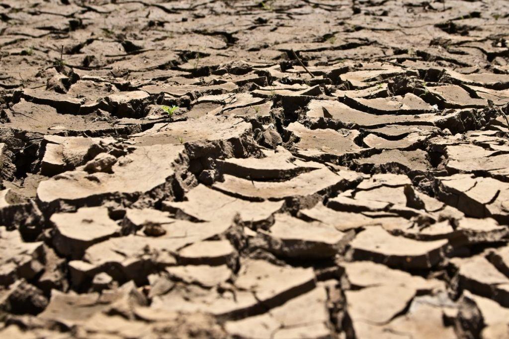Tierra en estado de sequía